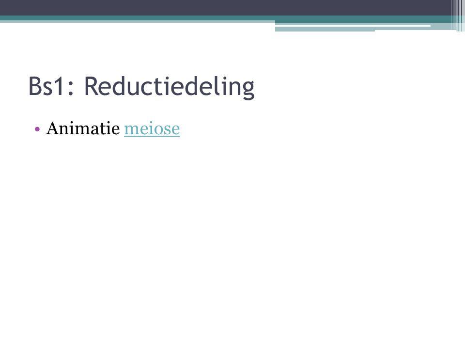 Bs1: Reductiedeling Animatie meiosemeiose