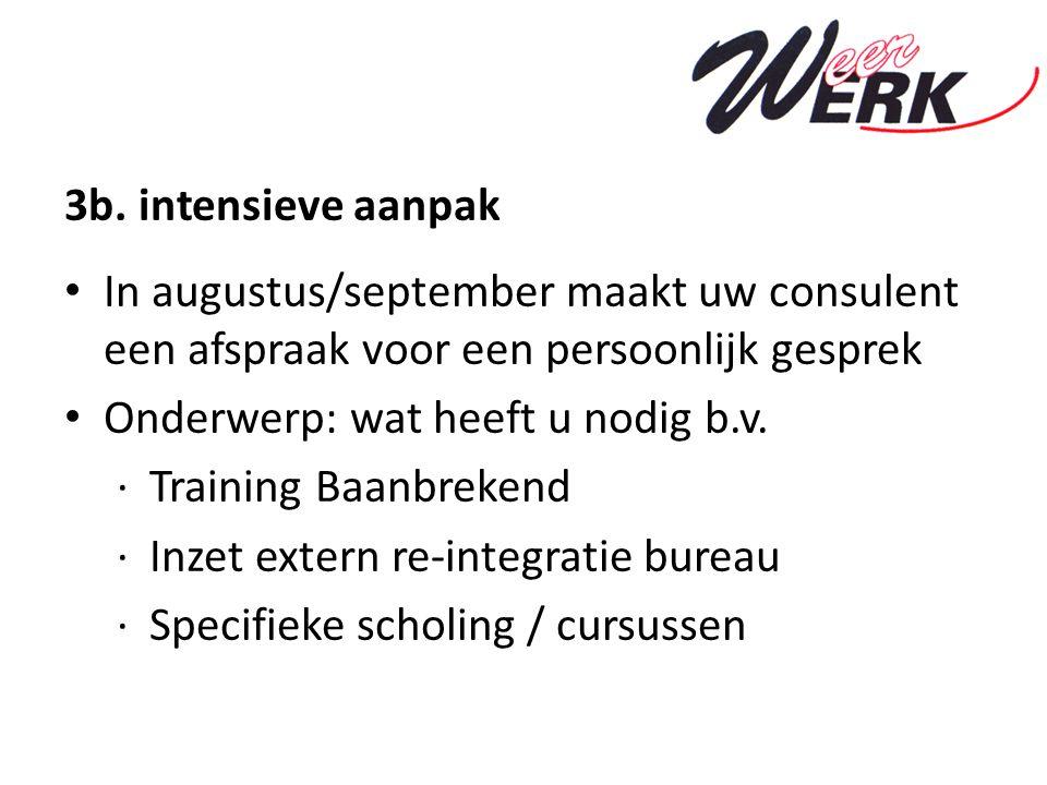 3b. intensieve aanpak In augustus/september maakt uw consulent een afspraak voor een persoonlijk gesprek Onderwerp: wat heeft u nodig b.v. ·Training B