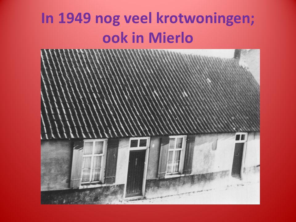 In 1949 nog veel krotwoningen; ook in Mierlo