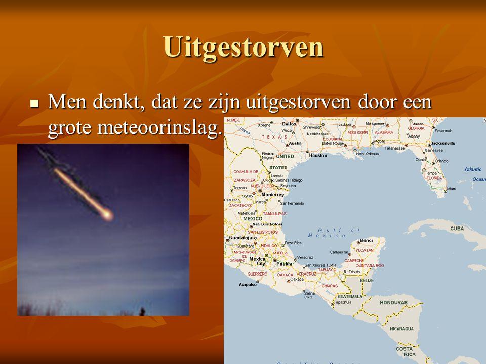 Uitgestorven Men denkt, dat ze zijn uitgestorven door een grote meteoorinslag. Men denkt, dat ze zijn uitgestorven door een grote meteoorinslag.