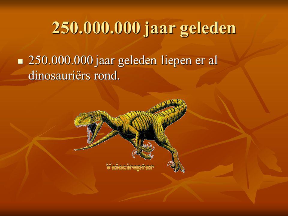 250.000.000 jaar geleden 250.000.000 jaar geleden liepen er al dinosauriërs rond. 250.000.000 jaar geleden liepen er al dinosauriërs rond.