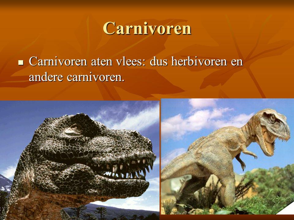 Carnivoren Carnivoren aten vlees: dus herbivoren en andere carnivoren. Carnivoren aten vlees: dus herbivoren en andere carnivoren.