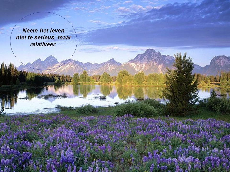 Het leven is een tuin vol bloemen, van vreugde, tevredenheid en gelegenheden van geluk. Vergeet niet om ze te plukken.