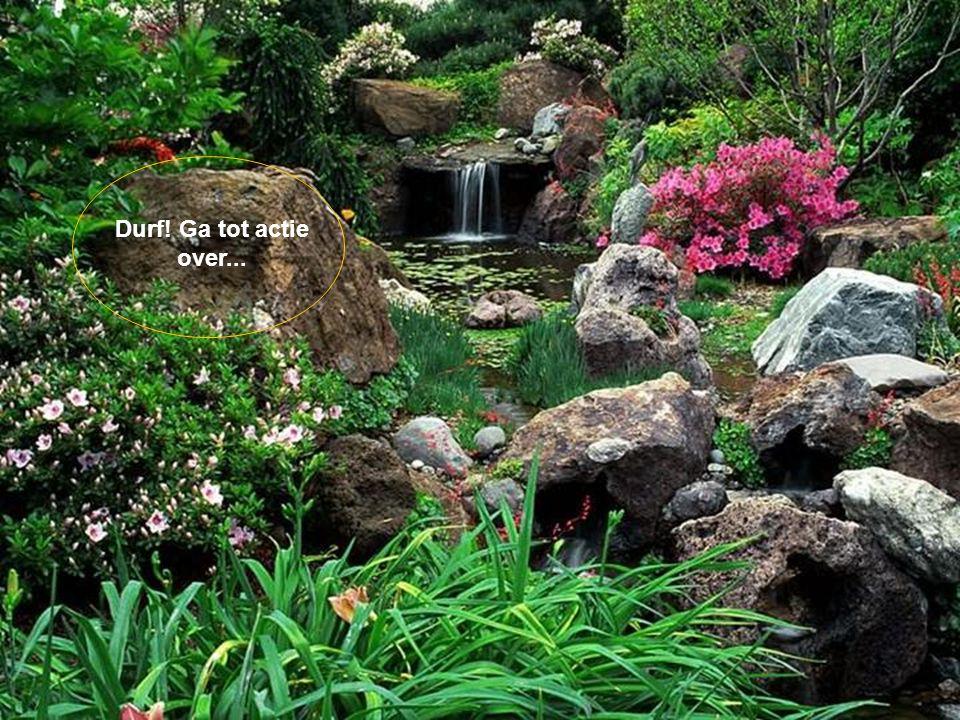 Het geluk is als een boeket bloemen, aangeboden door het leven.