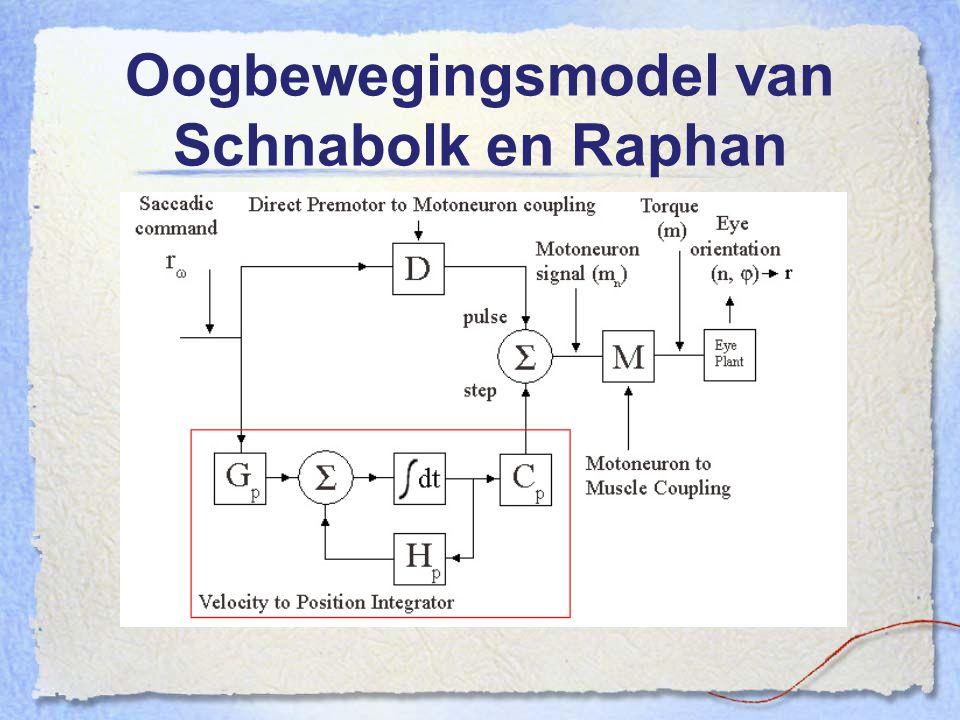 Oogbewegingsmodel van Schnabolk en Raphan