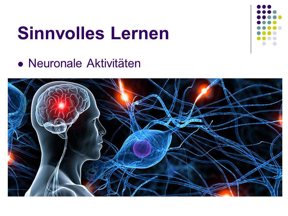 Sinnvolles Lernen Neuronale Aktivitäten