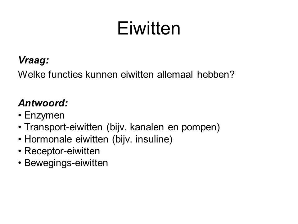 Eiwitten Vraag: Welke functies kunnen eiwitten allemaal hebben? Antwoord: Enzymen Transport-eiwitten (bijv. kanalen en pompen) Hormonale eiwitten (bij