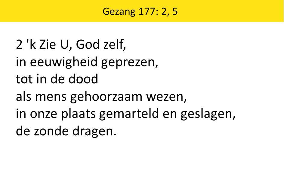 Gezang 177: 2, 5 2 'k Zie U, God zelf, in eeuwigheid geprezen, tot in de dood als mens gehoorzaam wezen, in onze plaats gemarteld en geslagen, de zond