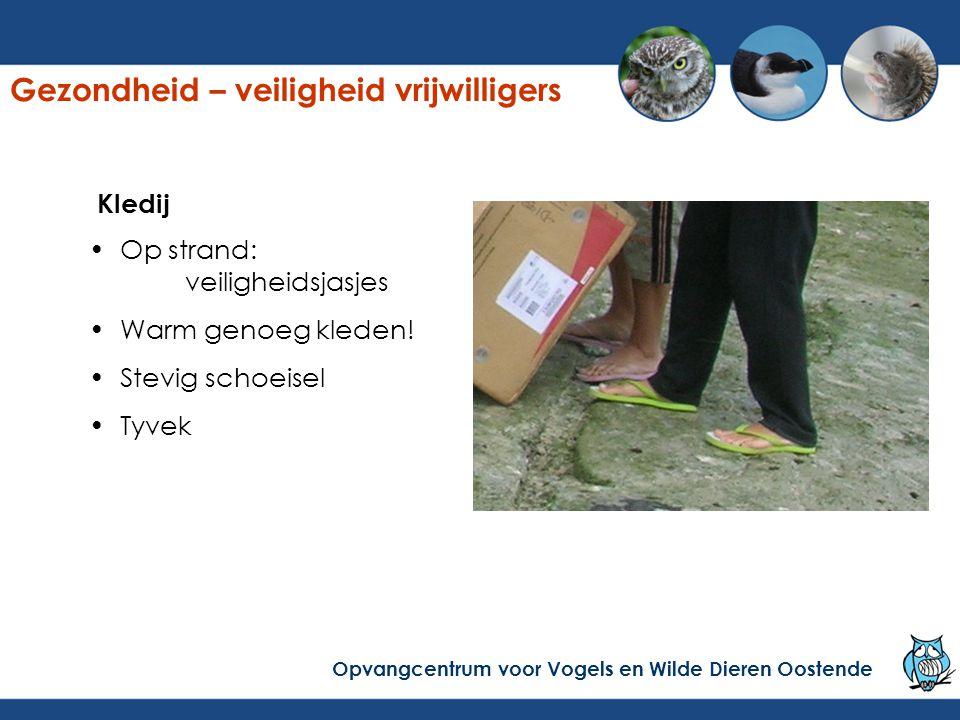 Kledij Op strand: veiligheidsjasjes Warm genoeg kleden! Stevig schoeisel Tyvek Gezondheid – veiligheid vrijwilligers Opvangcentrum voor Vogels en Wild