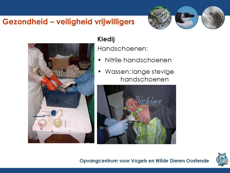 Handschoenen: Nitrile handschoenen Wassen: lange stevige handschoenen Kledij Gezondheid – veiligheid vrijwilligers Opvangcentrum voor Vogels en Wilde Dieren Oostende