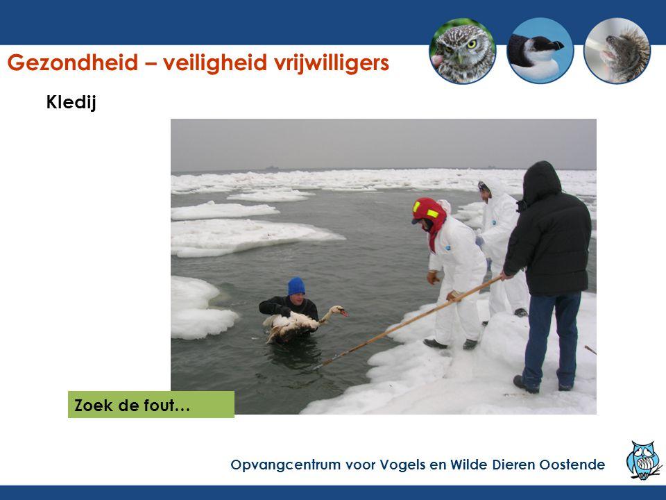 Kledij Zoek de fout… Gezondheid – veiligheid vrijwilligers Opvangcentrum voor Vogels en Wilde Dieren Oostende