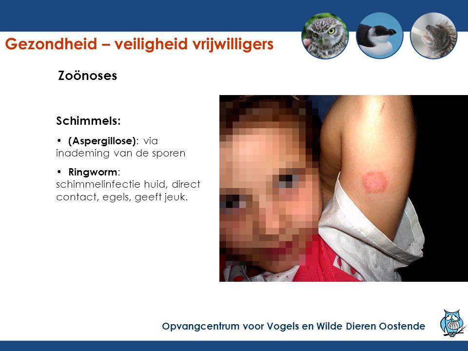 Schimmels: (Aspergillose) : via inademing van de sporen Ringworm : schimmelinfectie huid, direct contact, egels, geeft jeuk.