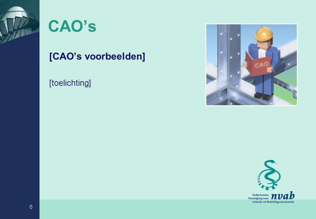 6 CAO's [CAO's voorbeelden] [toelichting]