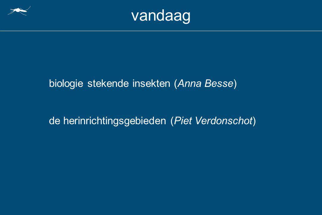 vandaag biologie stekende insekten (Anna Besse) de herinrichtingsgebieden (Piet Verdonschot)