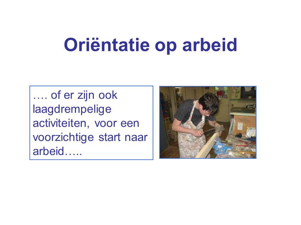 Oriëntatie op arbeid …. of er zijn ook laagdrempelige activiteiten, voor een voorzichtige start naar arbeid…..