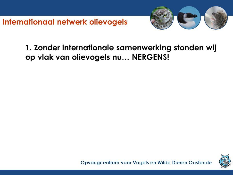 1. Zonder internationale samenwerking stonden wij op vlak van olievogels nu… NERGENS! Internationaal netwerk olievogels Opvangcentrum voor Vogels en W