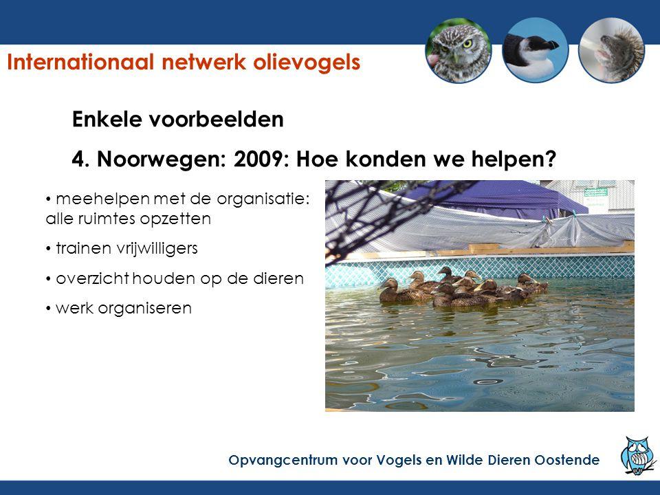 Enkele voorbeelden 4. Noorwegen: 2009: Hoe konden we helpen? meehelpen met de organisatie: alle ruimtes opzetten trainen vrijwilligers overzicht houde
