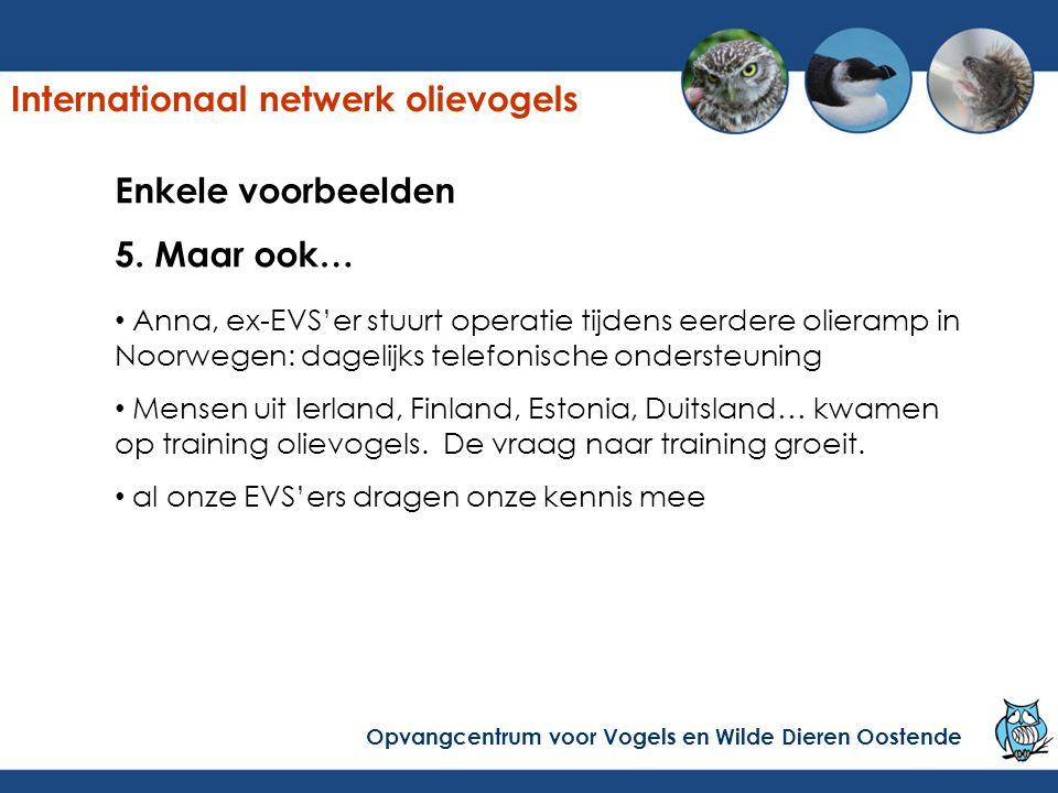 Enkele voorbeelden 5. Maar ook… Anna, ex-EVS'er stuurt operatie tijdens eerdere olieramp in Noorwegen: dagelijks telefonische ondersteuning Mensen uit