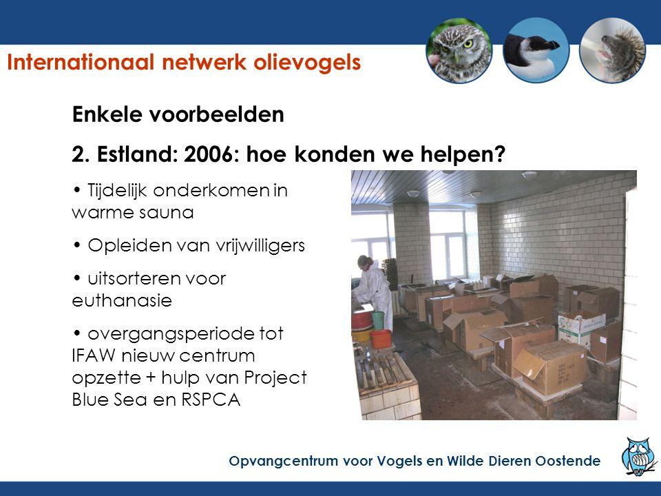 Enkele voorbeelden 2. Estland: 2006: hoe konden we helpen? Tijdelijk onderkomen in warme sauna Opleiden van vrijwilligers uitsorteren voor euthanasie