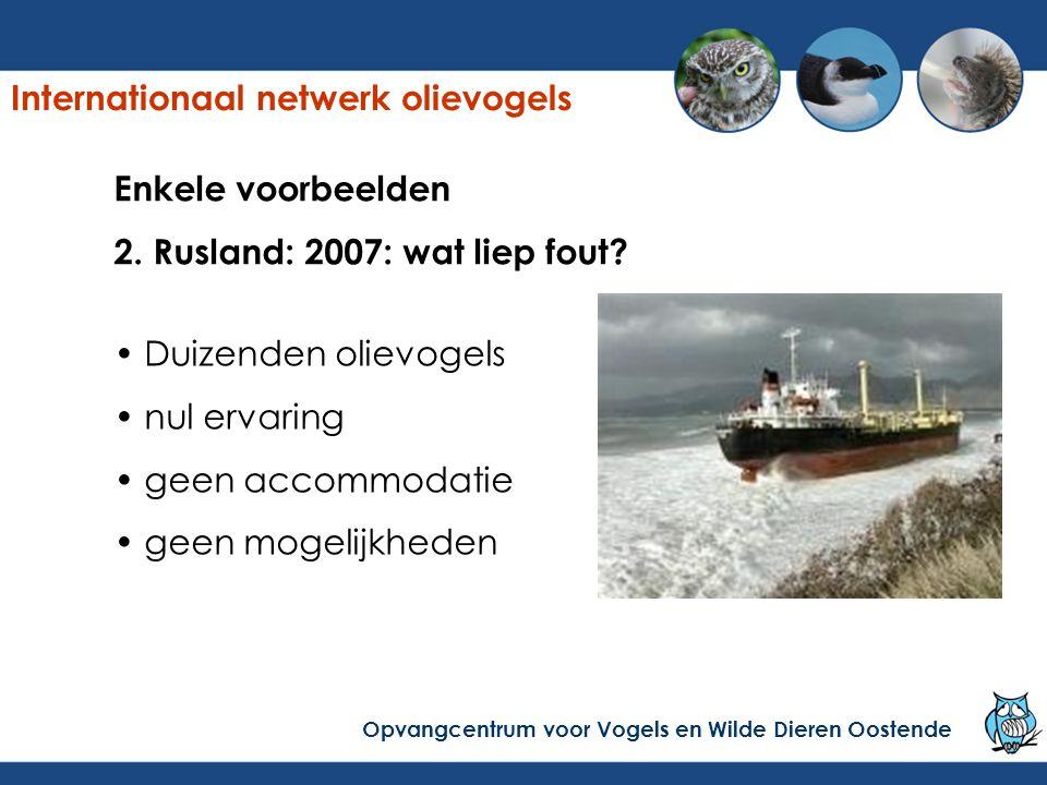 Enkele voorbeelden 2. Rusland: 2007: wat liep fout? Duizenden olievogels nul ervaring geen accommodatie geen mogelijkheden Internationaal netwerk olie