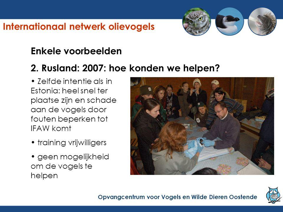 Enkele voorbeelden 2. Rusland: 2007: hoe konden we helpen? Zelfde intentie als in Estonia: heel snel ter plaatse zijn en schade aan de vogels door fou