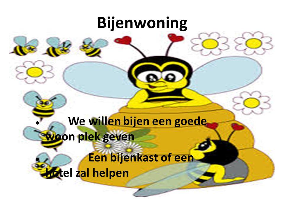 Bijenwoning We willen bijen een goede woon plek geven Een bijenkast of een hotel zal helpen