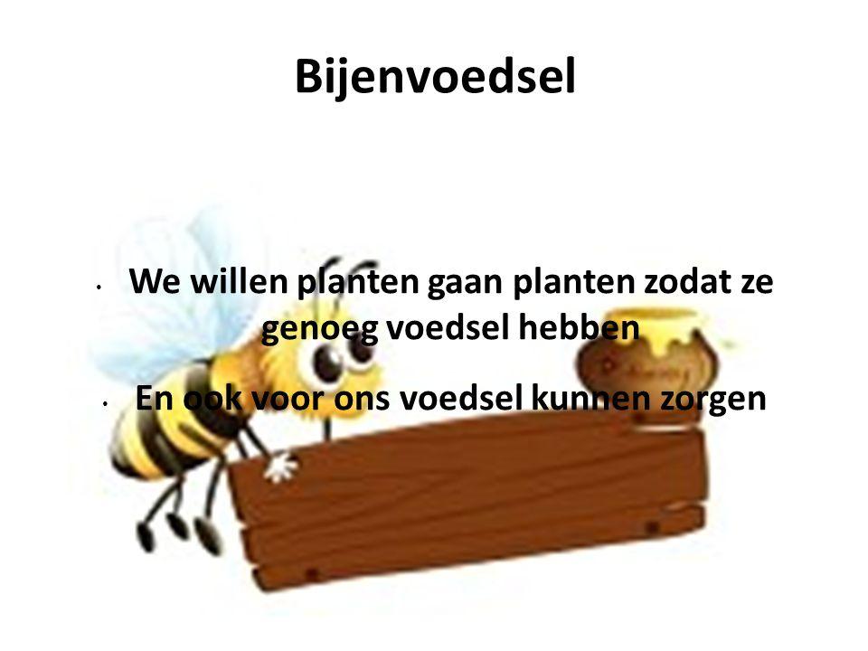 Bijenvoedsel We willen planten gaan planten zodat ze genoeg voedsel hebben En ook voor ons voedsel kunnen zorgen