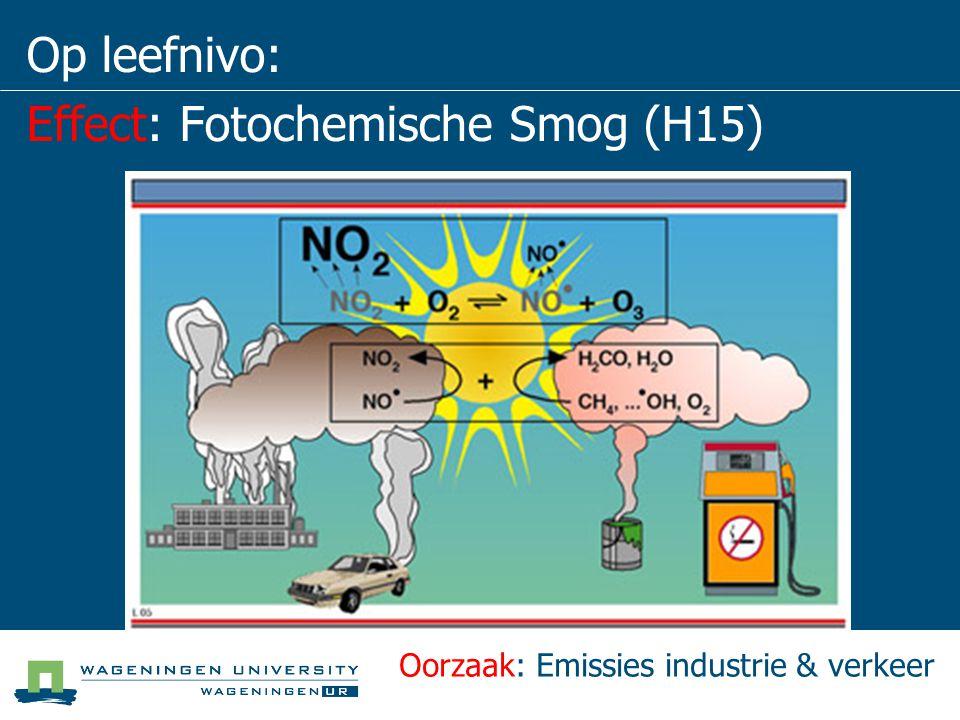 Schaal van problemen Lokale Schaal NH 3, grof stof, stank, zware metalen, benzeen, PAK.