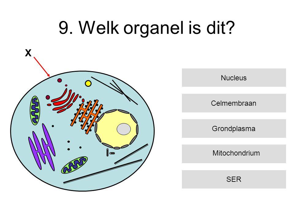 9. Welk organel is dit? Celmembraan Grondplasma SER Nucleus X Mitochondrium