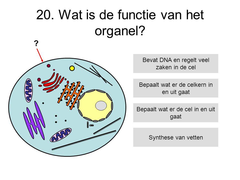 20. Wat is de functie van het organel? Bepaalt wat er de celkern in en uit gaat Bepaalt wat er de cel in en uit gaat Synthese van vetten Bevat DNA en