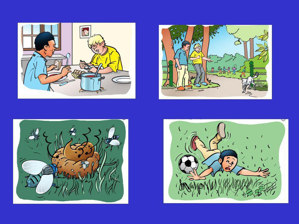 """Mondeling Nederlands nieuw het verhaal """"In het park' 'Naar de kinderboerderij'"""