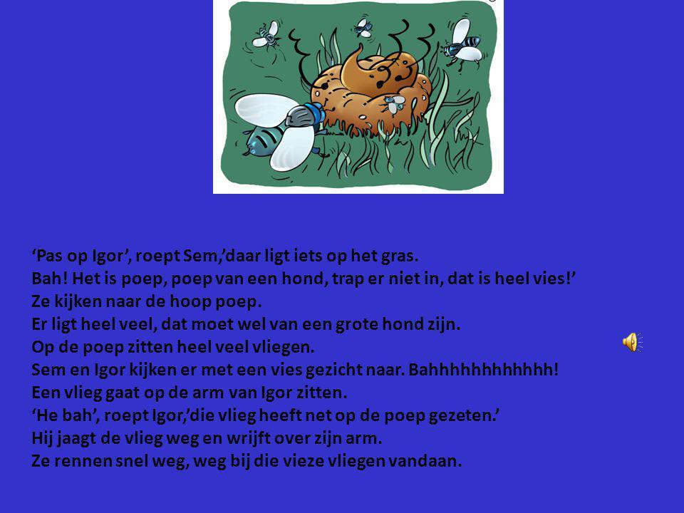 'Pas op Igor', roept Sem,'daar ligt iets op het gras.