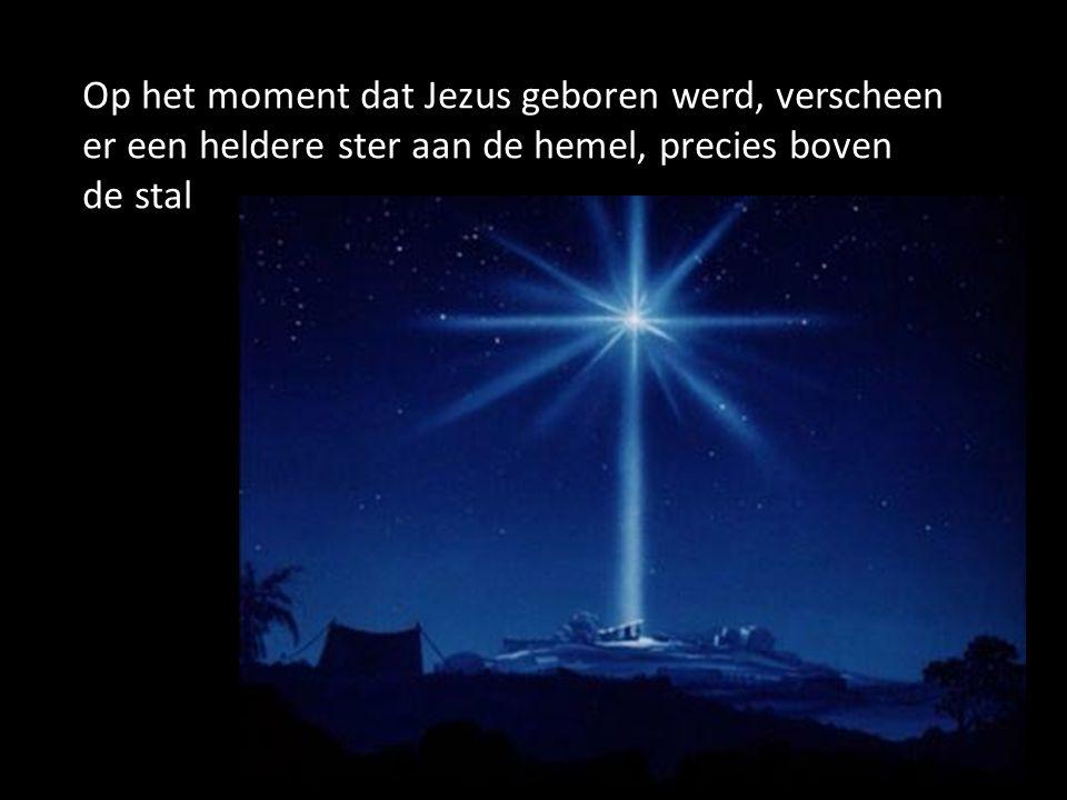 Op het moment dat Jezus geboren werd, verscheen er een heldere ster aan de hemel, precies boven de stal