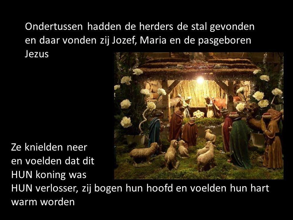 Ondertussen hadden de herders de stal gevonden en daar vonden zij Jozef, Maria en de pasgeboren Jezus Ze knielden neer en voelden dat dit HUN koning w