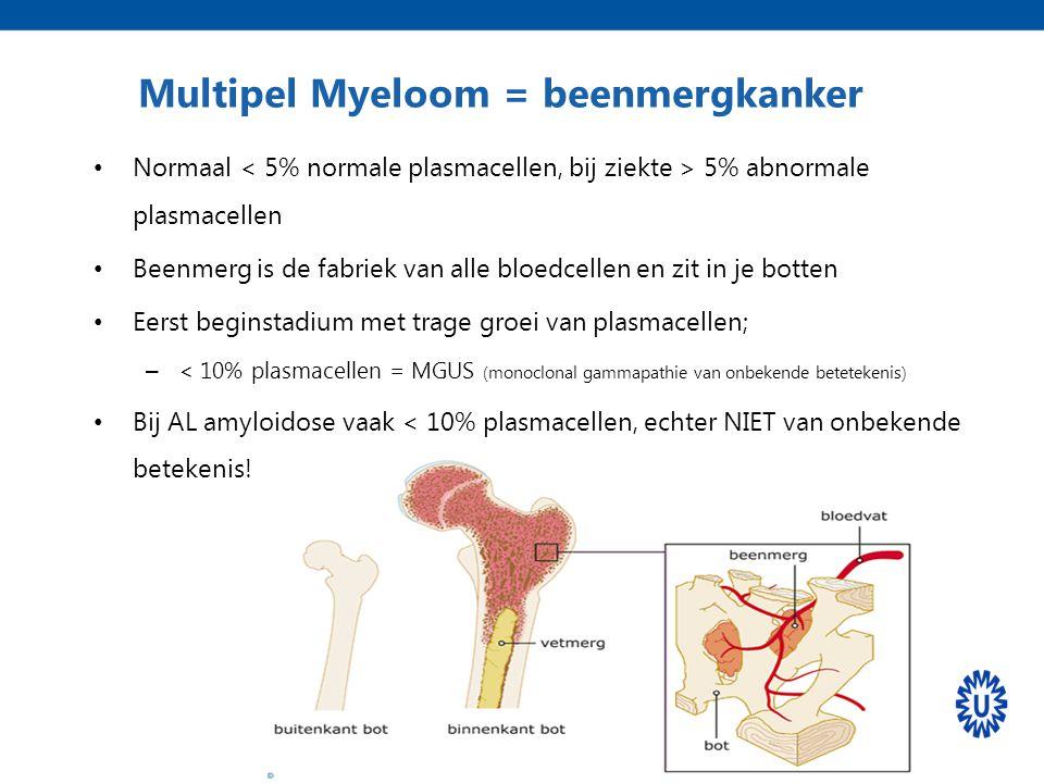 Normaal 5% abnormale plasmacellen Beenmerg is de fabriek van alle bloedcellen en zit in je botten Eerst beginstadium met trage groei van plasmacellen;