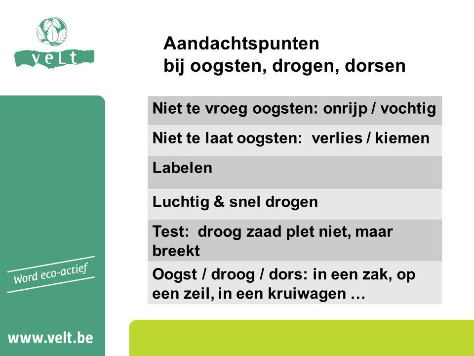 Aandachtspunten bij oogsten, drogen, dorsen Niet te vroeg oogsten: onrijp / vochtig Niet te laat oogsten: verlies / kiemen Labelen Luchtig & snel drog