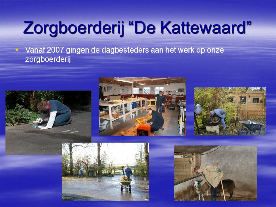 """Zorgboerderij """"De Kattewaard""""   Vanaf 2007 gingen de dagbesteders aan het werk op onze zorgboerderij"""