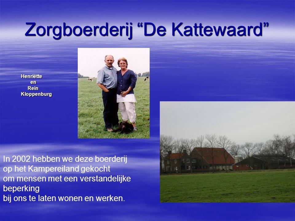 Henriëtte Henriëtte en en Rein Rein Kloppenburg Kloppenburg In 2002 hebben we deze boerderij op het Kampereiland gekocht om mensen met een verstandeli