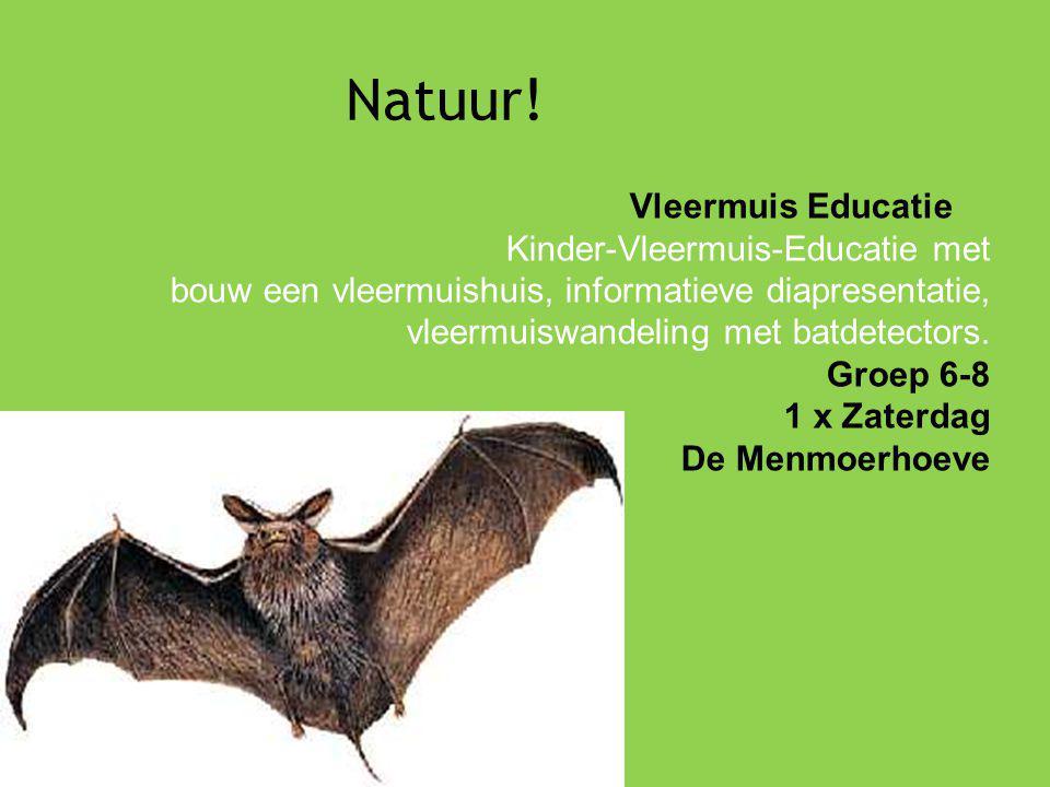 Natuur! Vleermuis Educatie Kinder-Vleermuis-Educatie met bouw een vleermuishuis, informatieve diapresentatie, vleermuiswandeling met batdetectors. Gro
