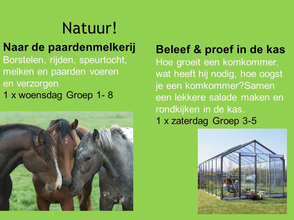 Natuur! Naar de paardenmelkerij Borstelen, rijden, speurtocht, melken en paarden voeren en verzorgen 1 x woensdag Groep 1- 8 Beleef & proef in de kas