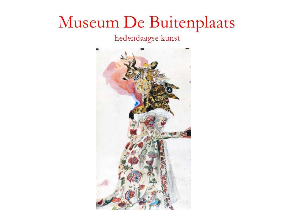 Museum De Buitenplaats hedendaagse kunst
