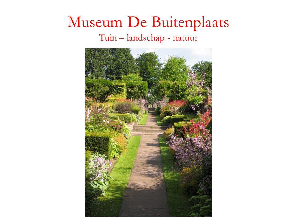 Museum De Buitenplaats Tuin – landschap - natuur