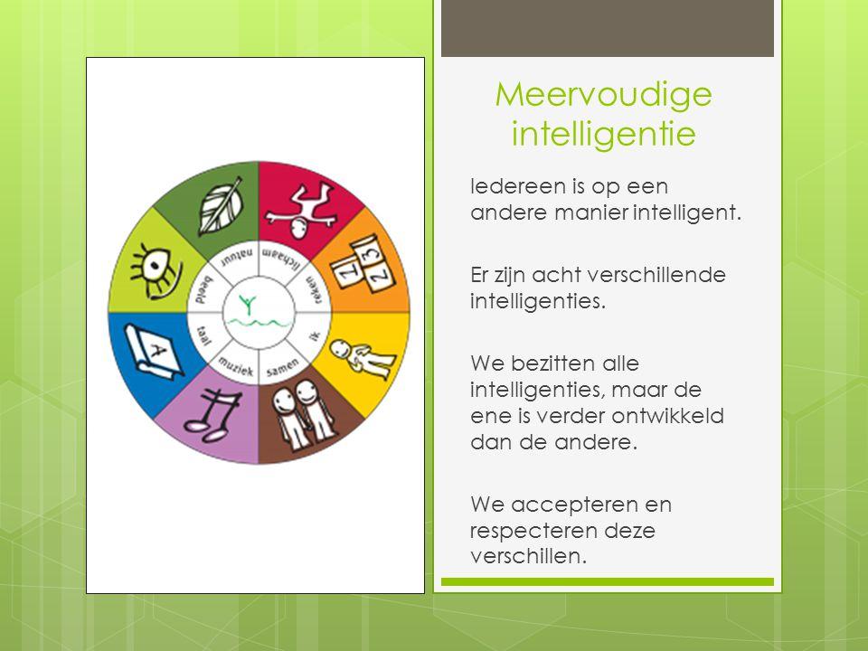 Meervoudige intelligentie Iedereen is op een andere manier intelligent.
