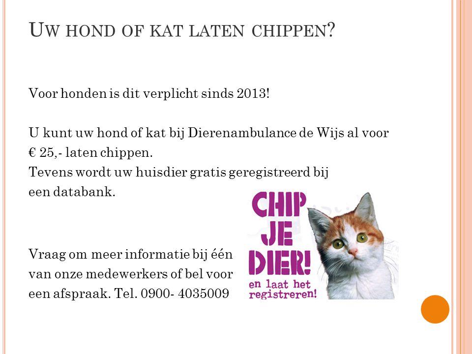 U W HOND OF KAT LATEN CHIPPEN ? Voor honden is dit verplicht sinds 2013! U kunt uw hond of kat bij Dierenambulance de Wijs al voor € 25,- laten chippe