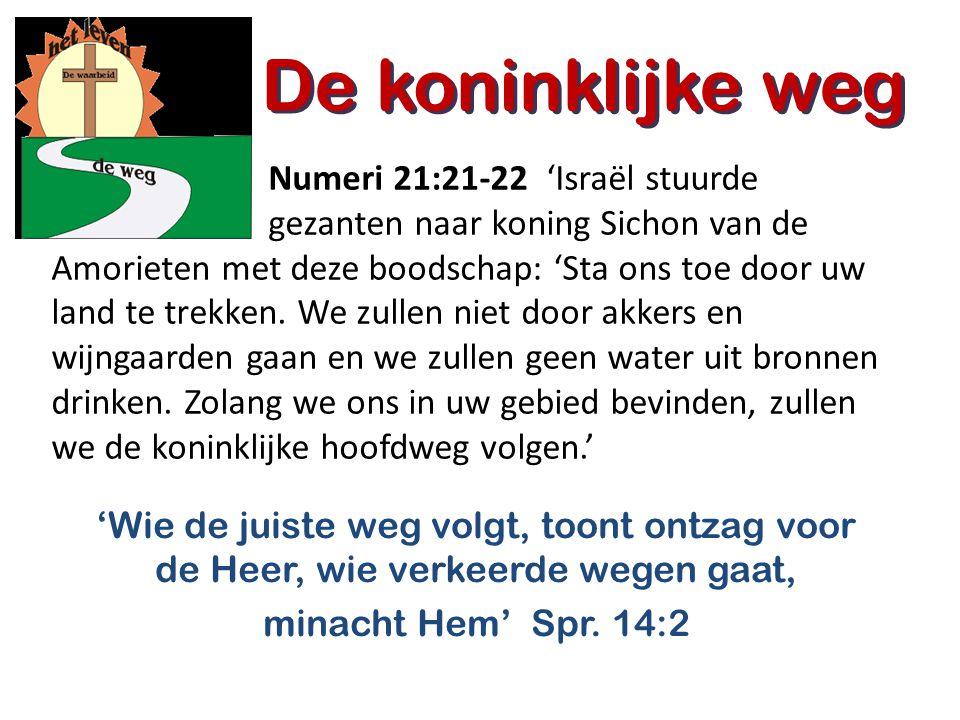 De koninklijke weg 'Wie de juiste weg volgt, toont ontzag voor de Heer, wie verkeerde wegen gaat, minacht Hem' Spr. 14:2 De koninklijke weg Numeri 21: