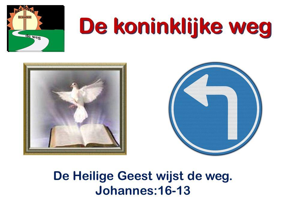 De Heilige Geest wijst de weg. Johannes:16-13 De koninklijke weg