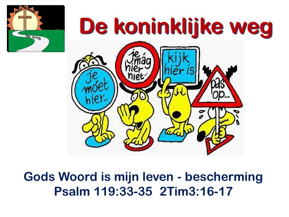 Gods Woord is mijn leven - bescherming Psalm 119:33-35 2Tim3:16-17 De koninklijke weg