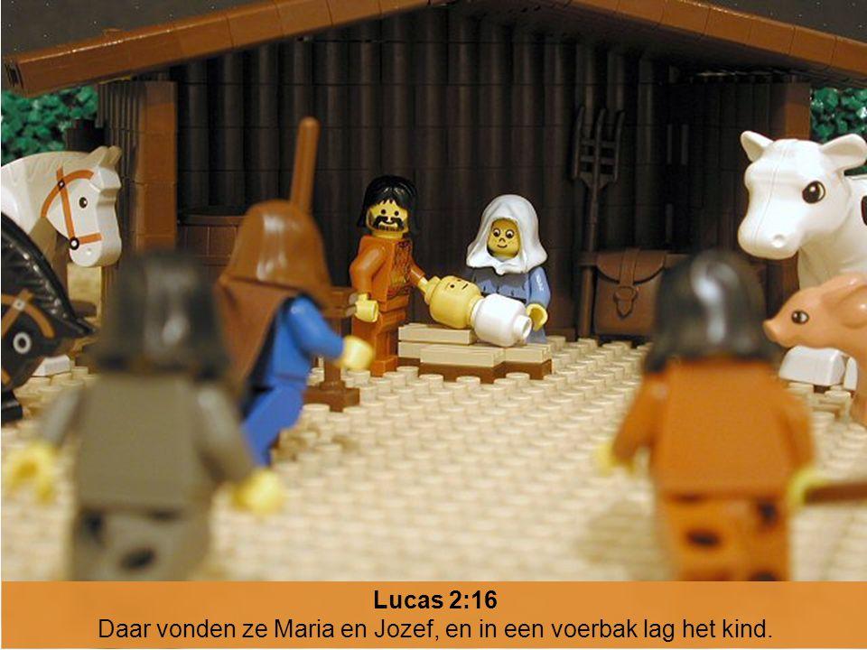 Lucas 2:16 Daar vonden ze Maria en Jozef, en in een voerbak lag het kind.