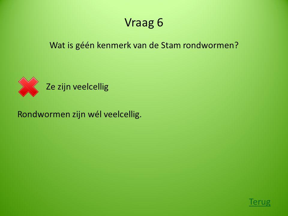 Vraag 6 Wat is géén kenmerk van de Stam rondwormen.
