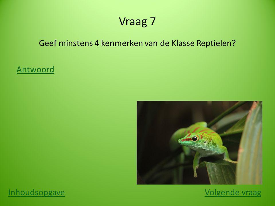 Vraag 7 Geef minstens 4 kenmerken van de Klasse Reptielen? Antwoord InhoudsopgaveVolgende vraag